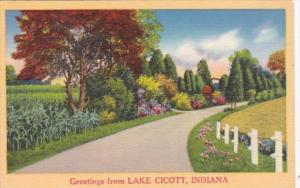 Indiana Greetings From Lake Cicott 1966