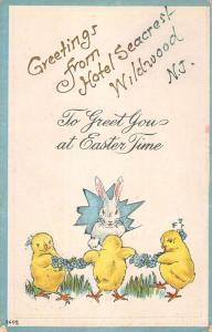 Wildwood New Jersey Easter Greeting Chicks Bunny Antique Postcard K80595