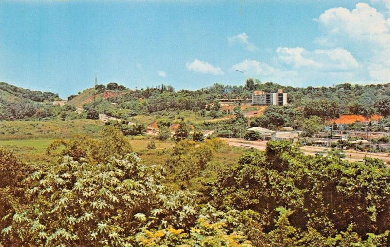 MAYAGUEZ PUERTO RICO~COUNTRY SCENE-MAYAGUEZ HILTON BACKGROUND POSTCARD