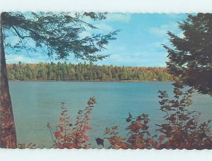 Pre-1980 Postmarked FOREST ONTARIO WATER by Sarnia Strathroy & London ON AD6089