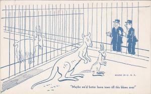 Vintage Arcade Card Humour Zoo Keepers Watching Kangaroo