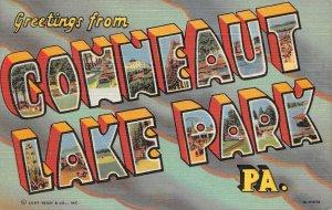 LPS16 Conneaut Lake Park Pennsylvania LARGE Big Letter Postcard