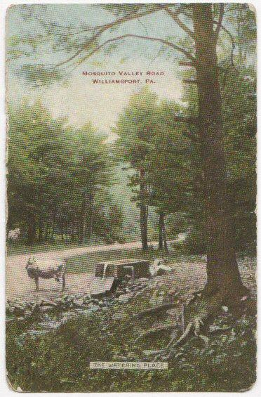Mosquito Valley Road Williamsport PA 1908