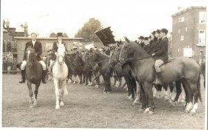 Hippique Horse Sport RPPC Holland 03.12