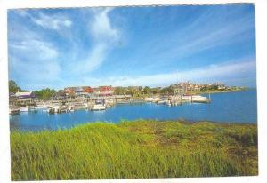 View of South Beach Marina, Hilton Head Island, South Carolina, 50-70s