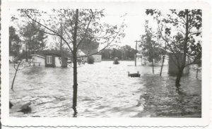Overflowing Lake Flooding Town Flooded Houses Disaster Scene Vintage Photograph