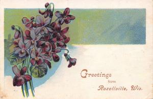 Rozellville Wisconsin~African Violets Bouquet~Embossed Greetings~1909 Postcard