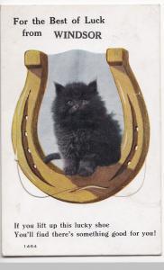 Berkshire; Best Of Luck From Windsor Novelty Foldout PPC, 1929 PMK, Shows Kitten