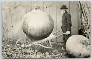 Waupun Wisconsin Pub~Exaggerated Onion~Send Me Some But Only Like This~c1910