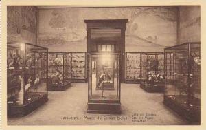 Belgium Tervuren Musee de Congo Salle des Oiseaux