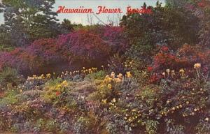 Hawaii Honolulu A Typical Hawaiian Flower Garden With Dramatic Colorings And ...