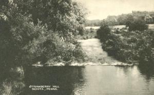 Strawberry Hill, Sciota, Pennsylvania unused Postcard