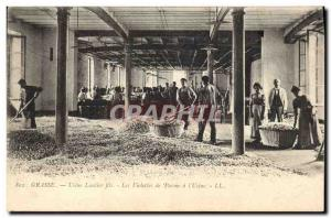 Old Postcard Collection Grasse Factory Lautier Fils Parma violets in the & # ...