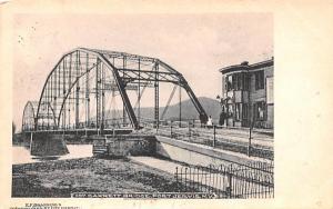 Barrett Bridge Port Jervis, New York Postcard
