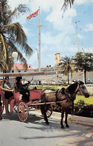 Nassau in the Bahamas Post card Old Vintage Antique Postcard Carriage Prepari...