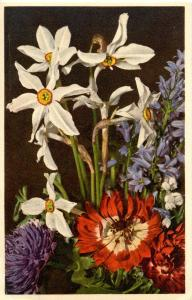 Flowers -   Spring Flowers                            (Edition Stehli #55)