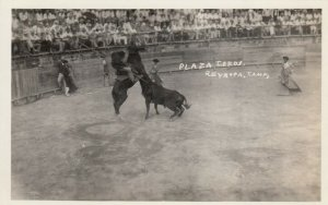 RP; REYNOSA, Tamps, Mexico, 1910-20s; Plaza Toros, Bull Fighting
