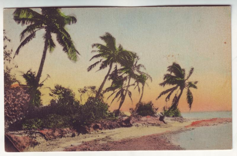 P365 JL, old postcard hand colored along the florida keys