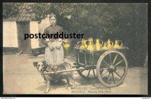 dc554 - BELGIUM Brussels 1910s Flemish Milk Maid. Dog Cart. Attelage du Chien