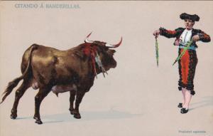 Citando a Banderillas, Stare down between Bull and Matador, 00-10s