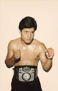 Boxing Erick Madrid The Sylmar Slasher World's Undefeated W A A Lightweight C...