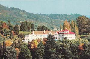 New Zealand Hotel Waitomo King Country North Island