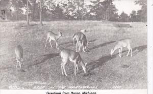 Michigan Greetings From Honor Deer In The Northwoods 1948 Real Photo