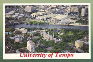 Tampa University Aerial View Tampa Florida