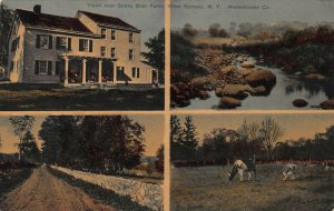 View Near Sunny Side Farms, W. Somers, N.Y., Early Postcard, Unused
