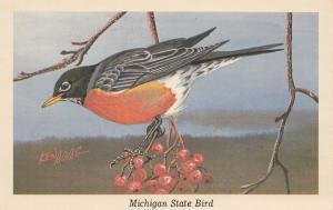 MICHIGAN STATE BIRD; Robin, 1950-60s ; AS; KEN HAAG
