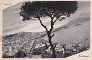 NAPOLI, Campania, Italy, 1900-1910´s; Panorama