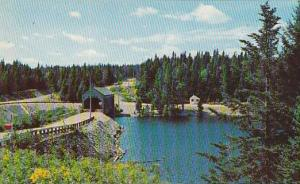 Fundy National Park , MONCTON , New Brunswick , Canada , 40-60s
