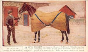 C26/ Advertising Ad Postcard c1910 Burlap Horse Blankets Man Horse 4