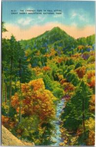 Chimney Tops in Fall Attire - fall foliage - Great Smoky Mountains National Park