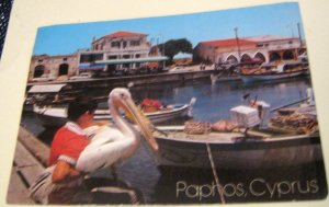 Cyprus Paphos Harbour with pelican - posted 1987