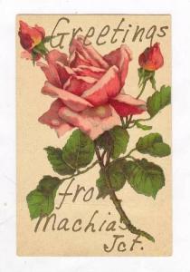 Greetings, Machias Jct, New York, 00-10s