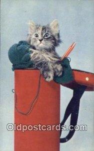 Chrome Cat Postcard, Post Card, Postales, Postkaarten, Kartpostal, Cartes, Po...