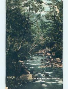 Divided-Back WATER SCENE Adirondacks - Saranac Lake New York NY hk2907