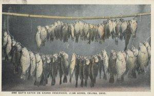CELINA, Ohio, 1909 ; Eden Park, 1 day's Fish Catch