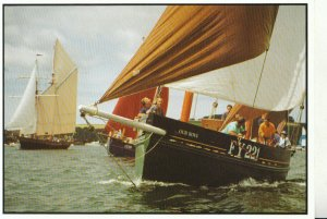 Shipping Postcard - Racing In The Falmouth Classics - Ref TZ6575