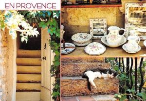 France En Provence, House Cat Stairs Katze 2000