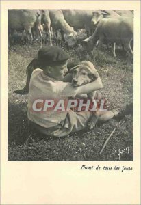 Modern Postcard Friend of All Dog Days Children Sheep