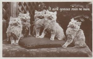 RP: Five Kittens It ain't gonna rain no more., 1920-40s