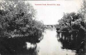 Howard City Michigan~Tamarack Creek Scene~Bridge in Bkgd~1908 B&W Postcard