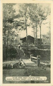 East Tawas Michigan Silver Creek Trout Rearing Ponds #26581 Postcard 21-2160
