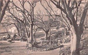 Top of Grotto, Aameda Gardens Gibraltar Unused