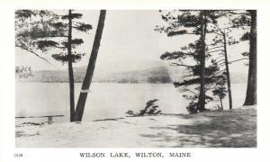 Wilton, Maine, ME, Wilson Lake, Unused Antique Vintage Postcard f8605
