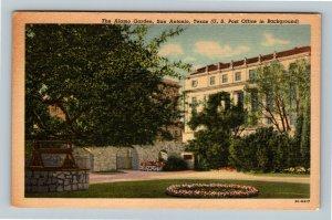 The Alamo Garden Flowers US Post Office  Vintage San Antonio Texas Postcard