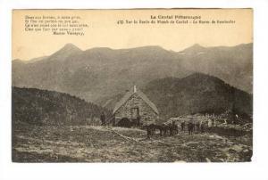 Sur La Ronte Du Picmb Du Cantal, Le Buren De Remberter, Le Cantal Pittoresque...