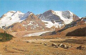 Mt Athabasca Canadian Rockies Unused